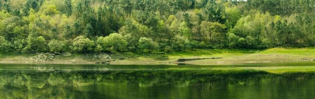 Camino Francés: Ruta O Cebreiro a Santiago Compostela