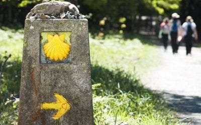 Turismo de Galicia 2021 subvenciona 87 proyectos para mejorar el entorno del Camino de Santiago